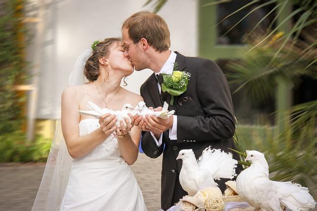 vypouštění holubic na svatbě