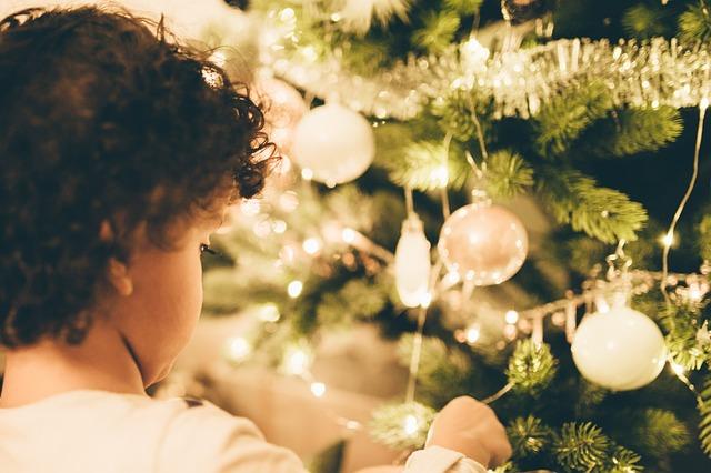 chlapec u stromečku