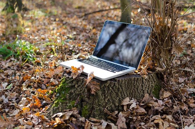 laptop na pařezu